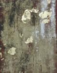 Wildflowers 1, 39 x 44cm